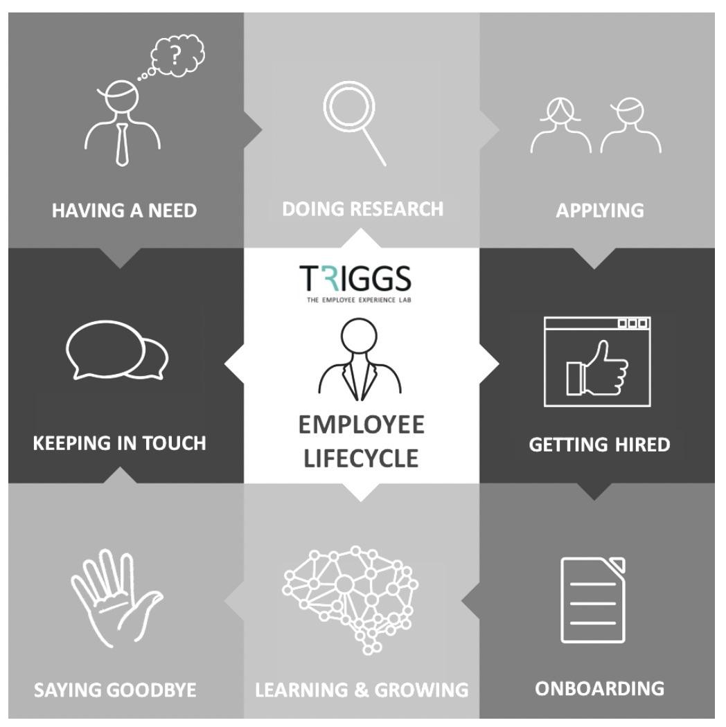 triggs